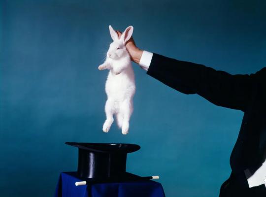 chapeau magique lapin