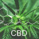 Est-ce que la substance CDB est dangereuse pour la santé?