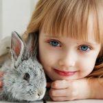 Quel jouet faut-il acheter pour votre lapin nain ?